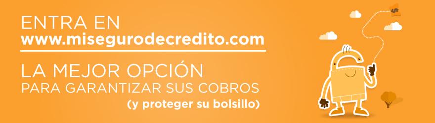 Mi-seguro-de-credito