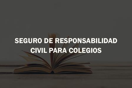 Tipos de fianzas autos post for Seguro responsabilidad civil autonomos obligatorio
