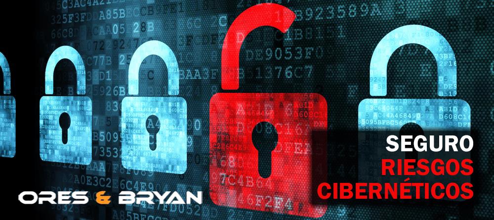 seguro para ciber riesgos