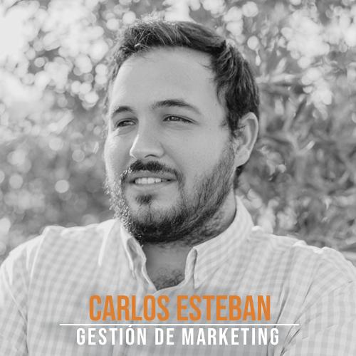 Carlos Esteban Gestion Marketing