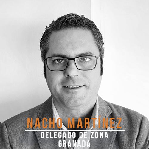 Nacho Martinez Delegado Granada