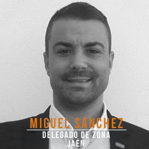 Miguel Sanchez Delegado Jaen