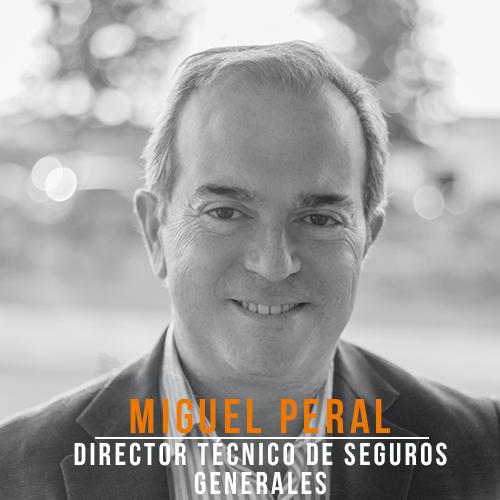 Miguel Peral Seguros Generales
