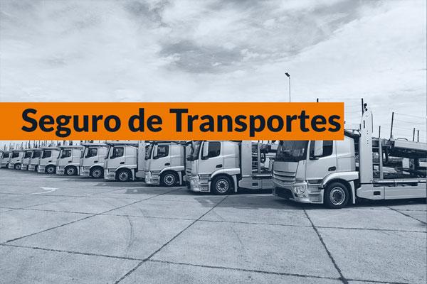 Seguro para transportes