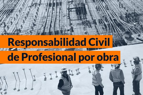 Responsabilidad Civil de profesional por obra