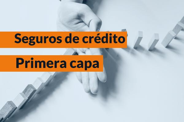 Seguros de crédito para empresas